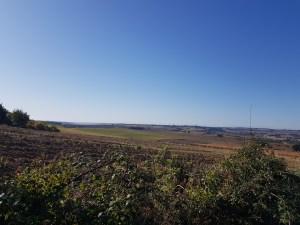 fields near Miradoux