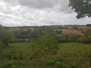 Gr65 near La romieu