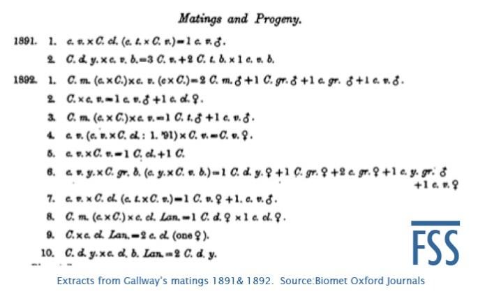 Galloway's breeding records