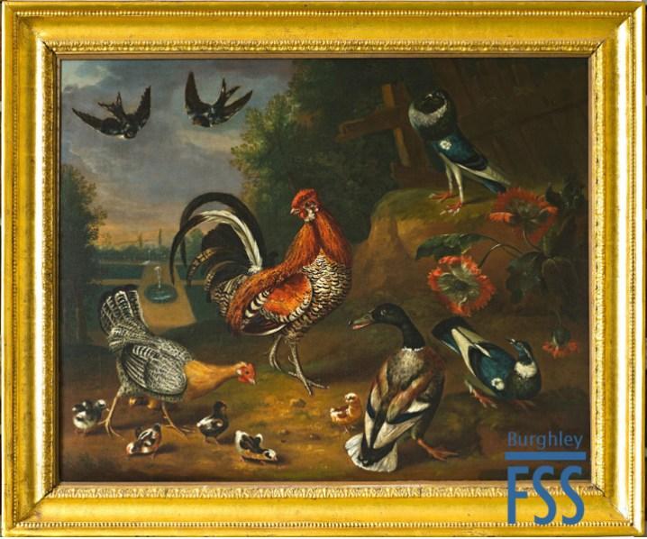 A farm birds by Peter Paillou