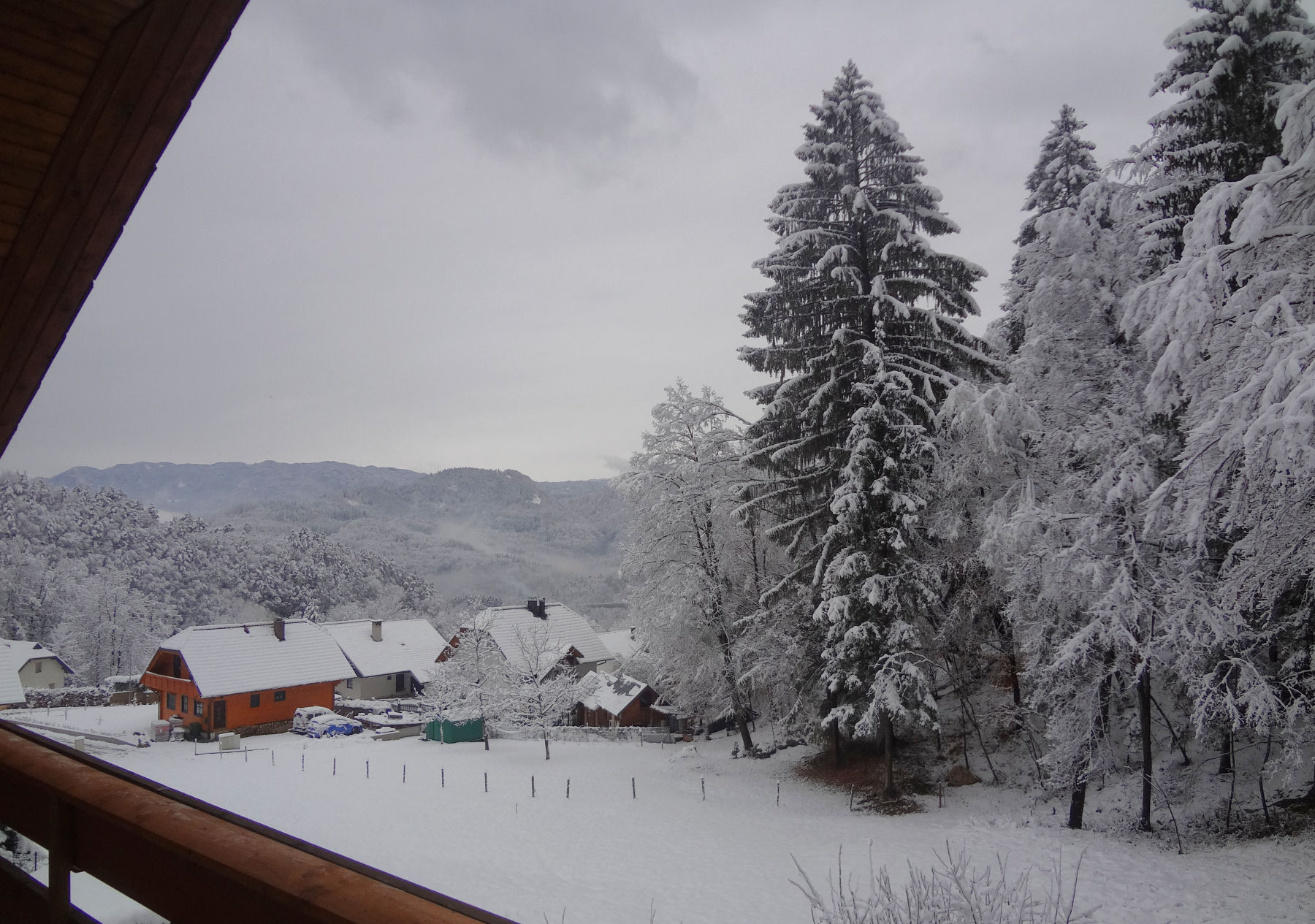 First snow of the 201516 winter in the Bled area