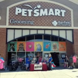 petsmart adoption event sunday