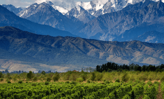 Argentinian wine mountains