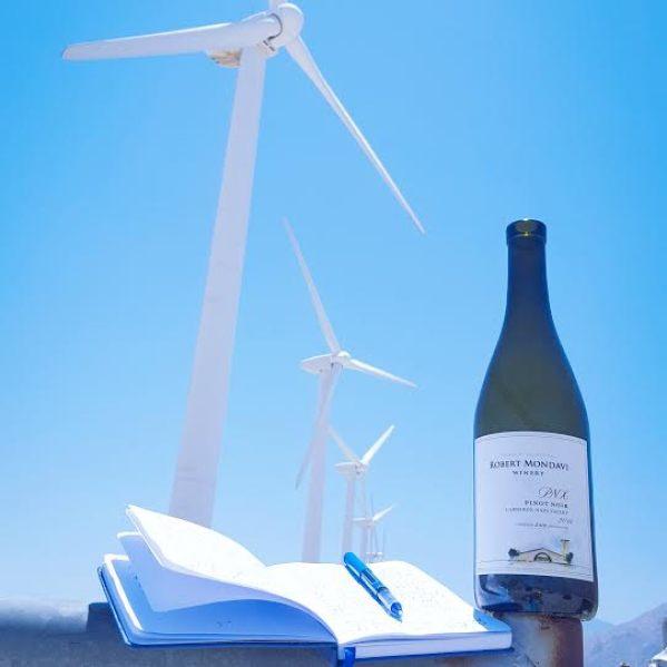 PS Pinot Windmills