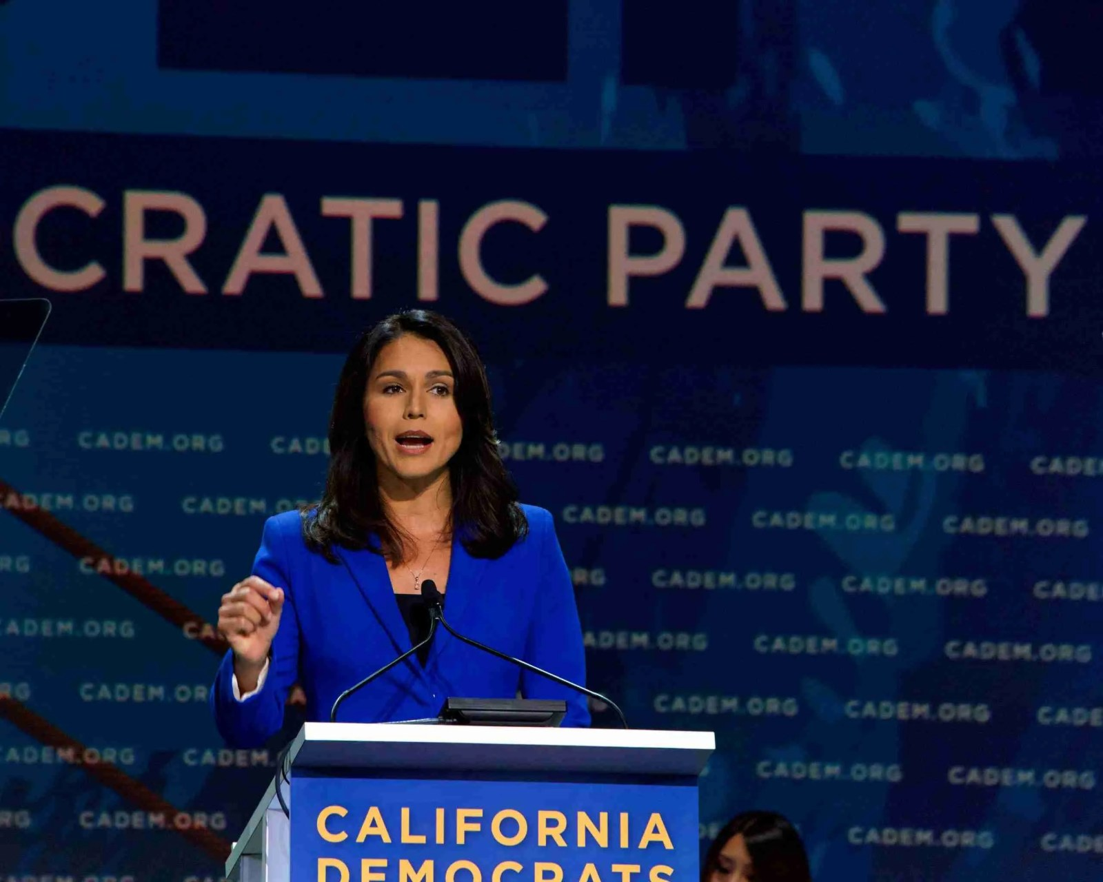 Tulsi Gabbard is Suing Hillary Clinton for $50 Million in Defamation Lawsuit 7