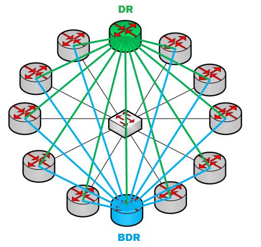 BDR (Backup Designated Router).