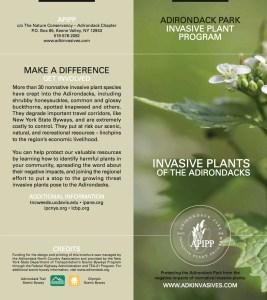 InvasivePlantsoftheAdirondacksBrochure