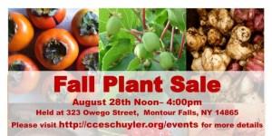 permaculture_plant_sale_flyer