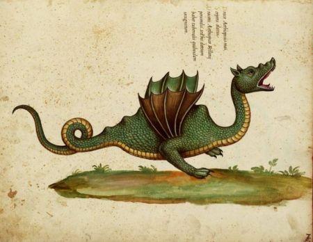 울리세 안드로반디 - 동물의 역사에 있는 용의 그림