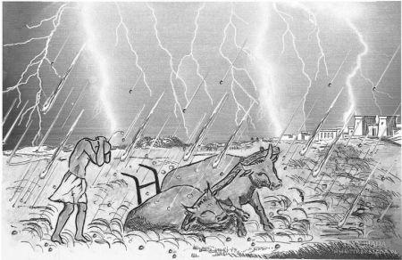 우박으로 가축이 죽는 10가지 재앙 - 출애굽기