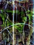 Untitled_Artwork (13)