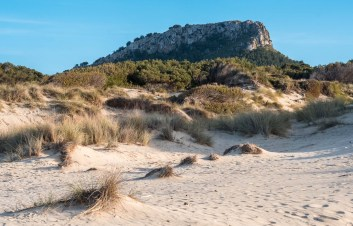 Mojorcan dunes at sunset at the northernmost tip of the island of Mallorca