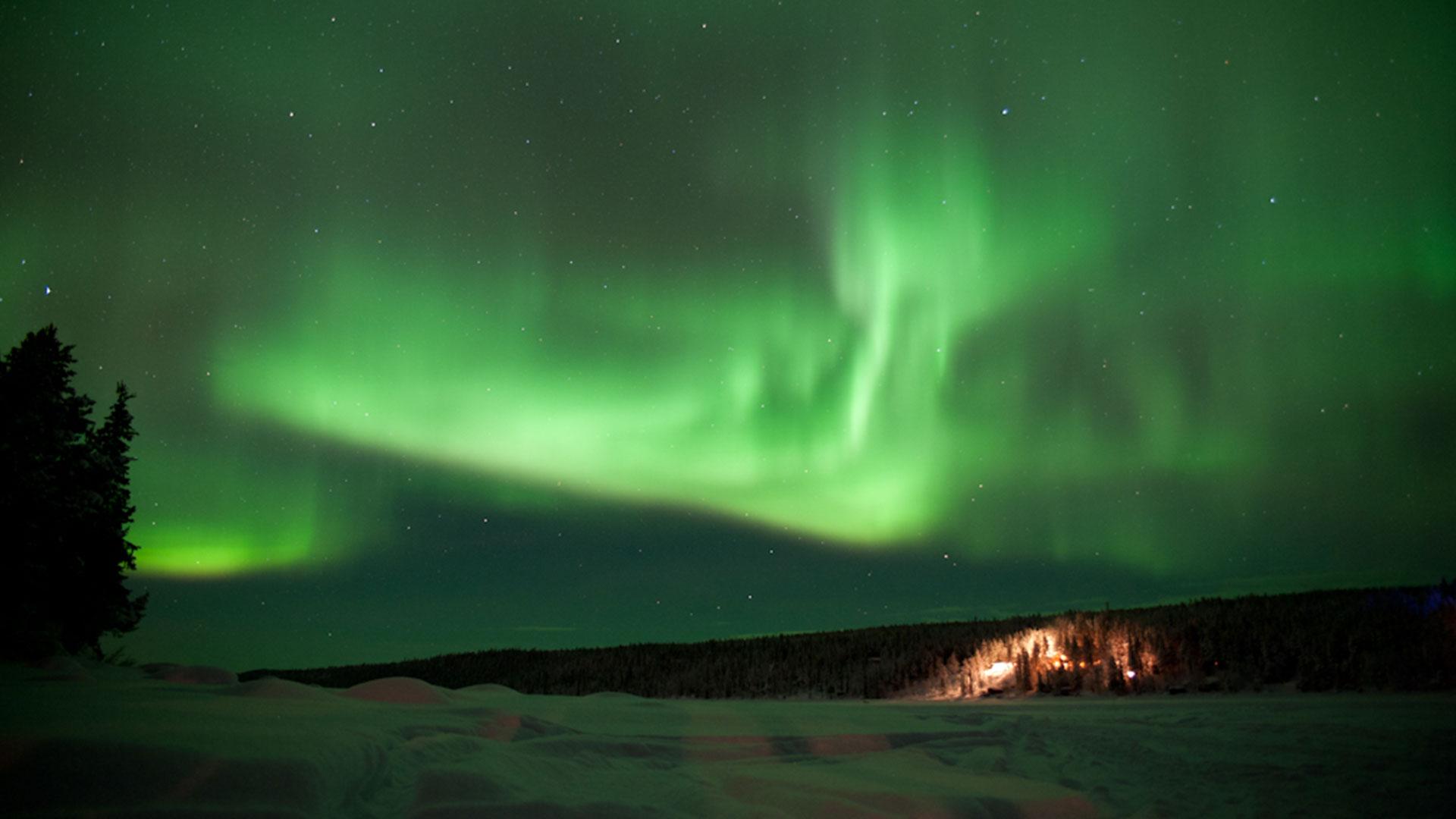 Northern Light Tour Iceland