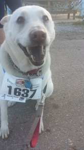I finished the race, mom!