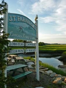 The salt marsh at J.T. Farnham's, Essex, Massachusetts