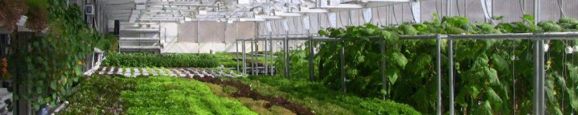 Inside Eco Ark