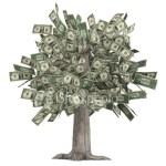 Structured Settlement Money Tree