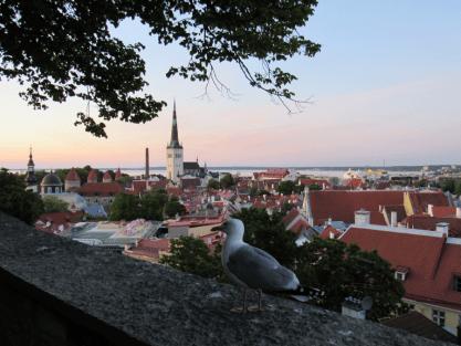 Kohtuotsa Aussichtsplattform | Foto: Silja Borghans, ferwehge.com