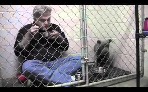 Veterinario desayunando dentro de una jaula con un perro asustadizo para que se sienta cómodo