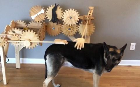 Cuando no puedes dedicarle mucho tiempo a tu perro pero eres ingeniero