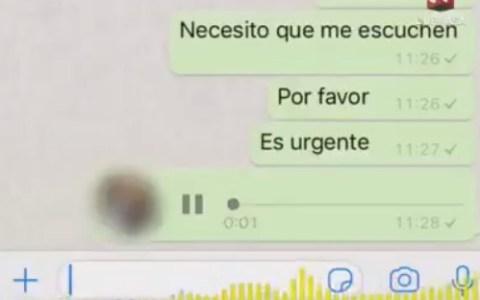 Mensaje de un padre hasta las pelotas del grupo de whatsapp de padres del colegio de su hijo