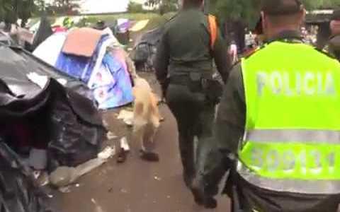 Este perro policía se ha ganado hoy el sueldo
