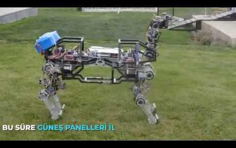 Boston Dynamics Hacendado