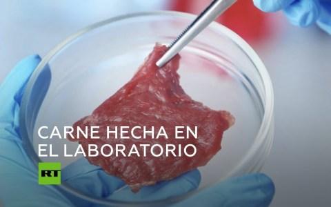 "Crean el bistec de laboratorio o ""carne limpia"". ¿Cortocircuito vegano?"