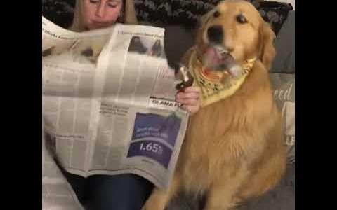 Yo siempre desayuno con la prensa