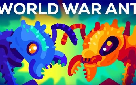 La guerra mundial de las hormigas