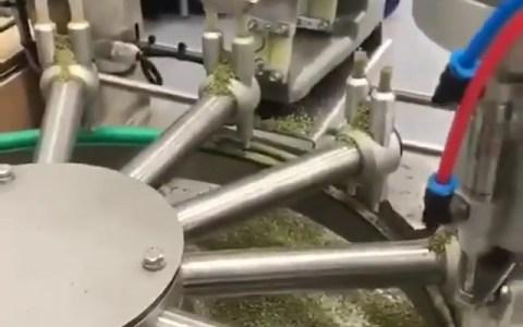 El vídeo que el tío que Snoop Dogg contrató para hacerle los petas no quiere que veas