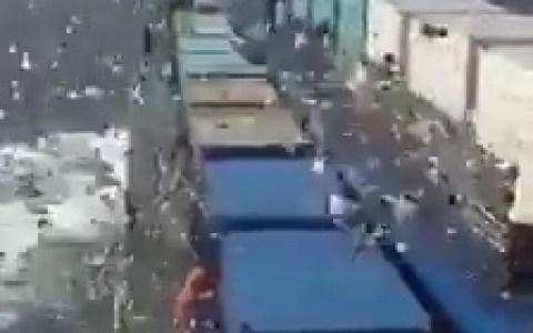 - Ayer liberaron a 2 millones de palomas