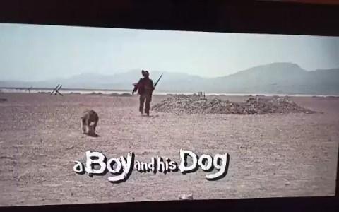 La mejor traducción del título de una película jamás hecha.