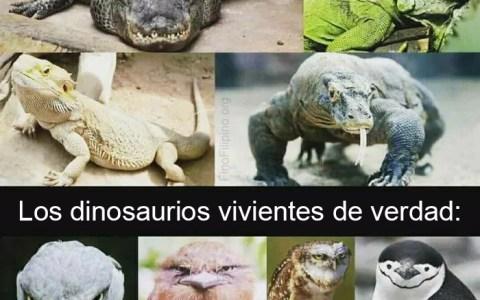 La realidad sobre los dinosaurios que nadie quiere escuchar