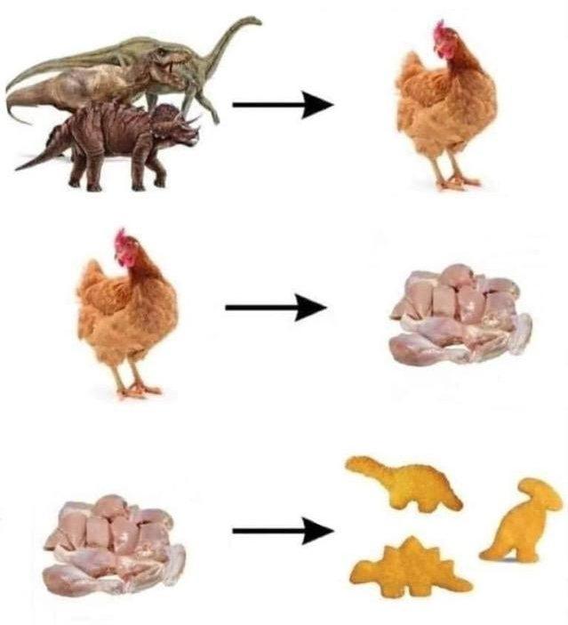 El círculo de la evolución se ha completado