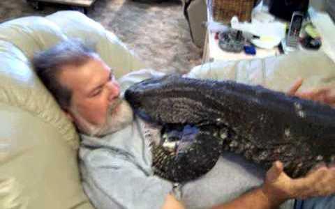Un hombre viendo la TV con un lagarto gigante encima