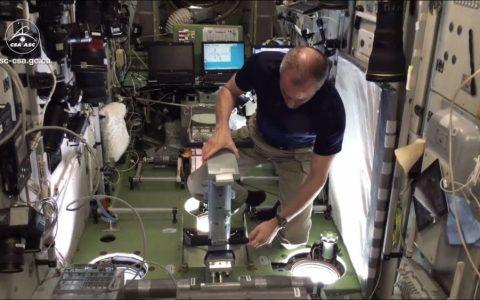 ¿Cómo se pesan los astronautas cuando están en el espacio?