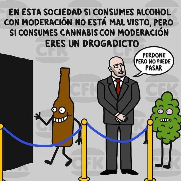 Hipocresía drogata