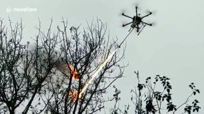 Otra aplicación para los drones con lanzallamas: eliminación de nidos de avispas