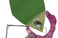 O que ven os ollos dos nenos