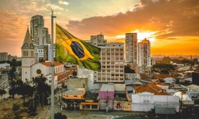 brazil selva de fintechs