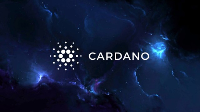 COTI Will Launch The First Algorithmic Stablecoin 'Djed' On Cardano –  Fintechs.fi