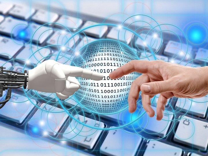 Gorila vai usar robôs para capturar dados dos investimentos dos usuários