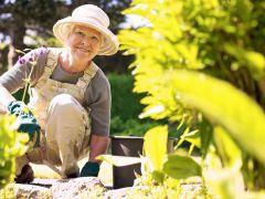 Кредит «Пенсионный» от Россельхозбанка: условия, требования, порядок оформления