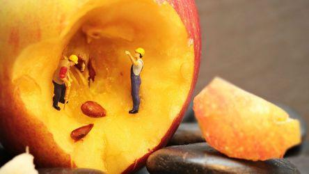 Кредитная зависимость и кредитомания, или психологические аспекты закредитованности