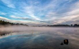 Mist at Colemere