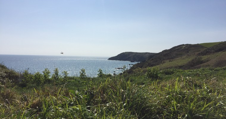 Three Toddler-Friendly Walks in South Cornwall