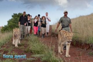 Zorgfontein 17 March 2012-53594