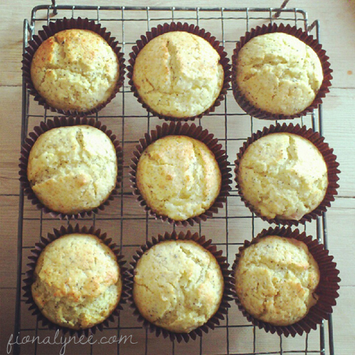 Orange Nectarine Muffins from fionalynne.com