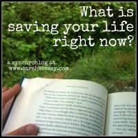 Sarah Bessey Saving Your Life Synchroblog